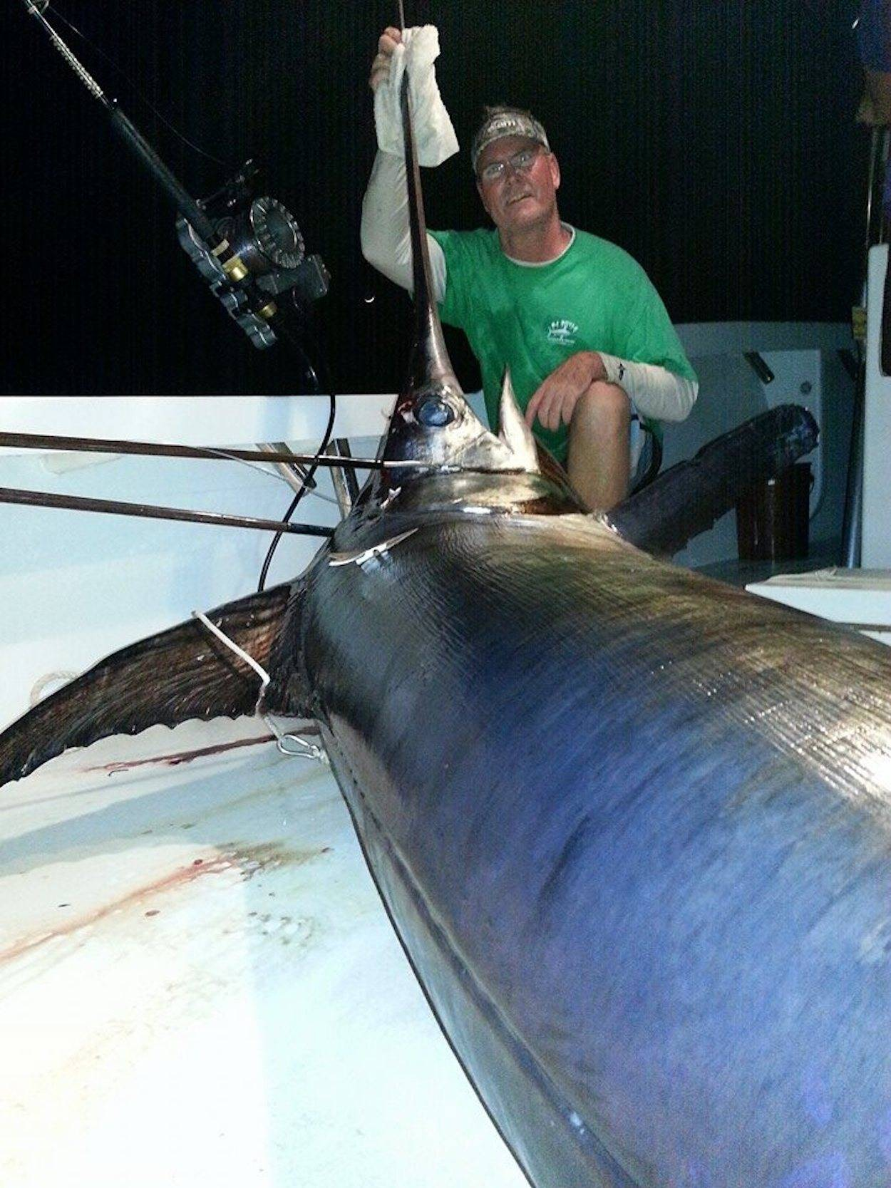 daytime swordfish in the spread fishing