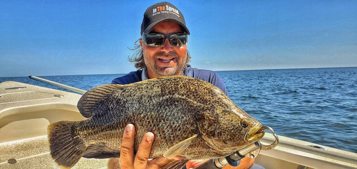 tripletail FADs in the spread william toney fishing video