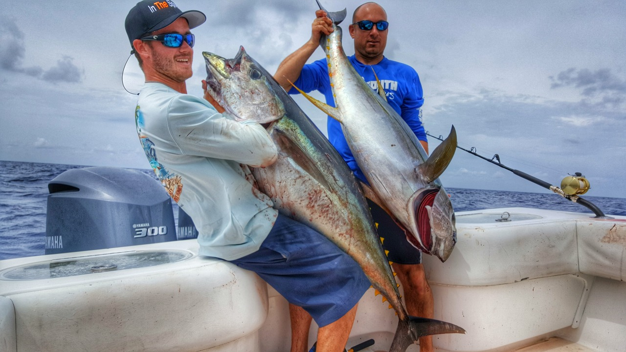 light tackle yellowfin tuna fishing video in the spread josh howard venice louisiana