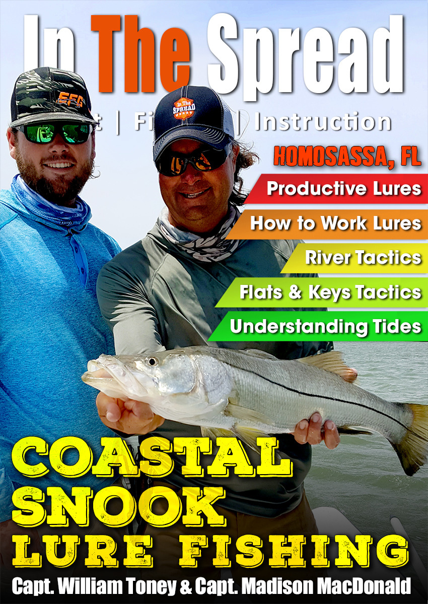 snook fishing in the spread william toney robalo lures