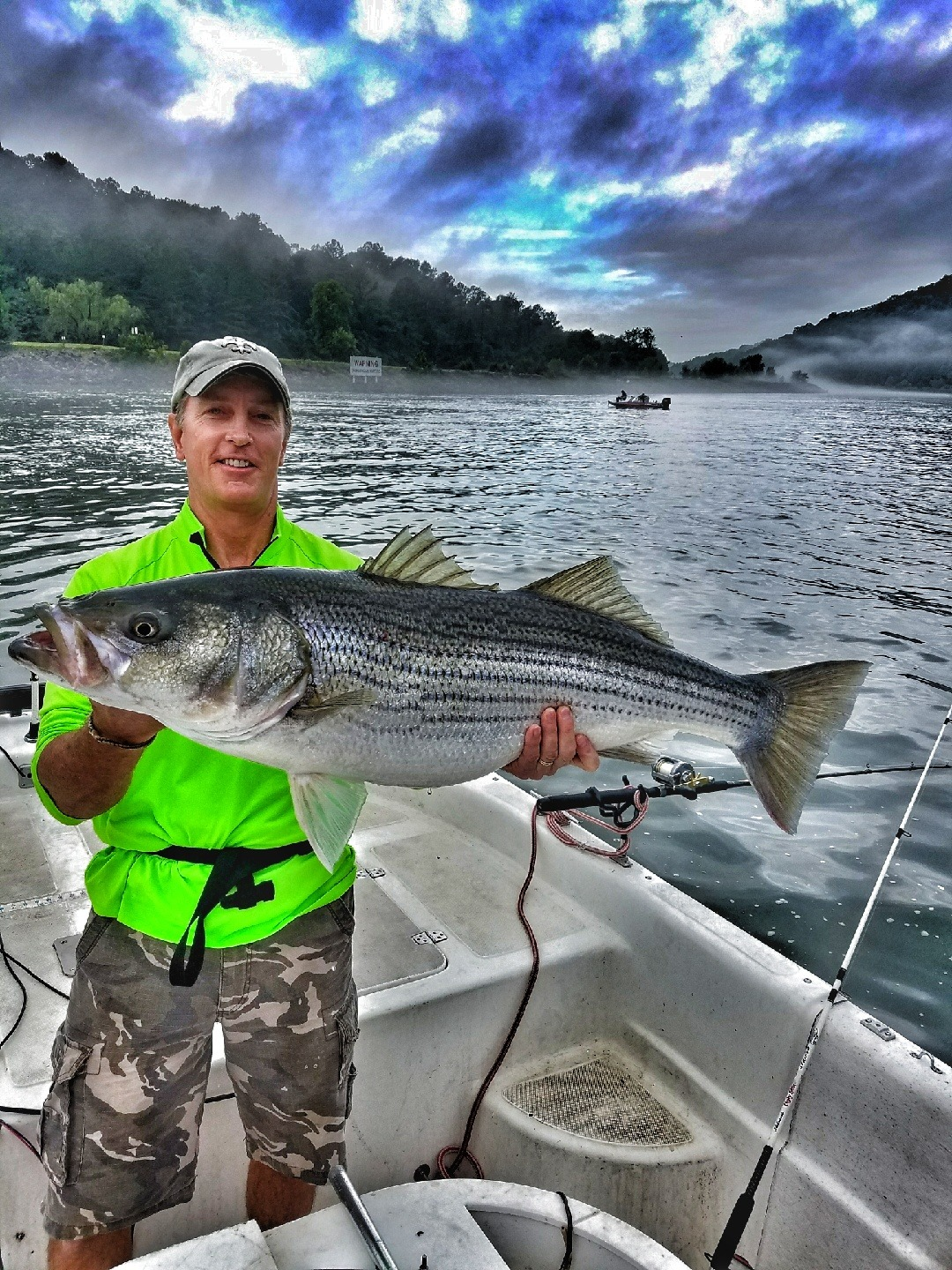 striper fishing freshwater in the spread video tennessee baits