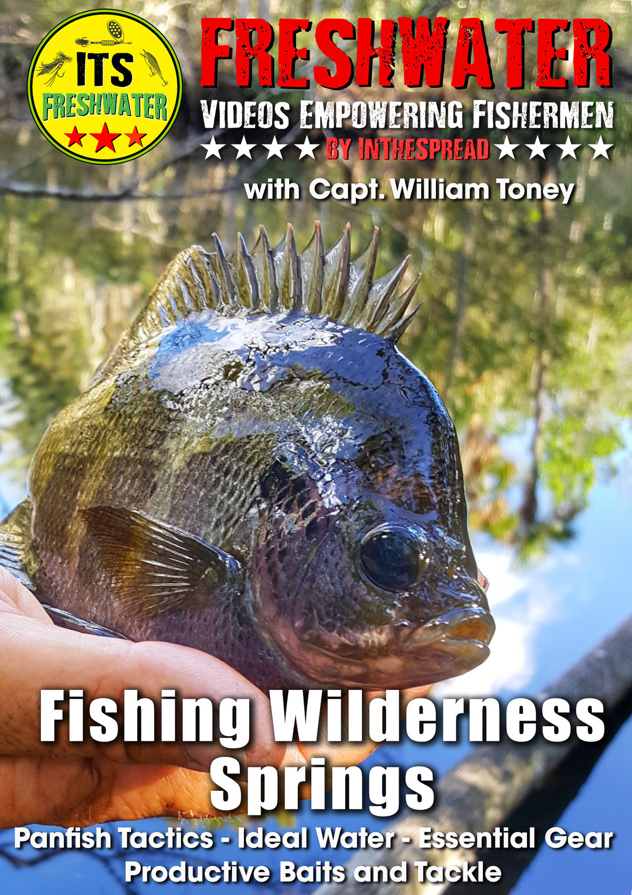 panfish fishing video in the spread william toney florida bluegill