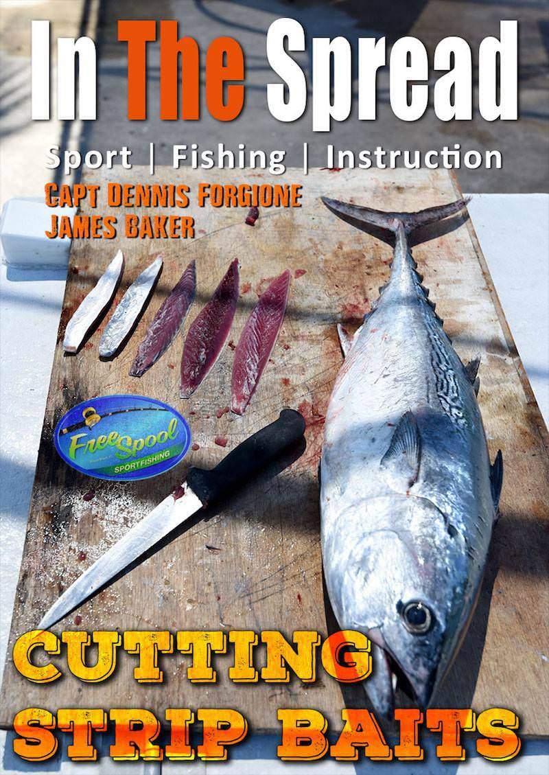 cutting strip baits in the spread fishing videos dennis forgione