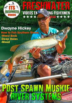 post spawn musky fishing in the spread dwayne hickey