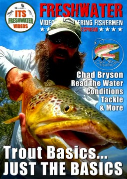 trout fishing basics in the spread video chad bryson