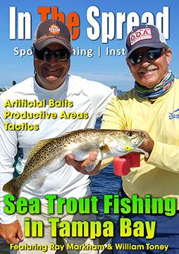 Sea Trout Fishing in Tampa Bay