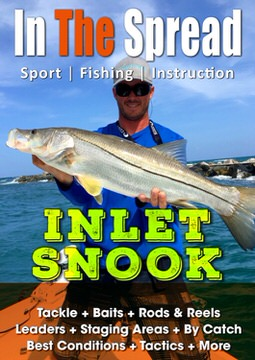snook fishing in the spread video baits