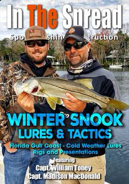 snook lures winter fishing in the spread william toney