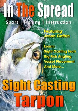 sight casting tarpon in the spread fishing video florida